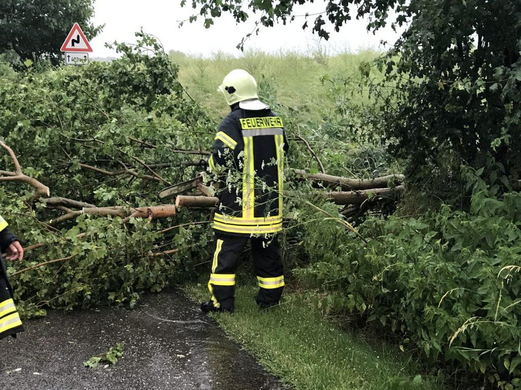 Einsatz 22.06.2017 Baum auf Straße