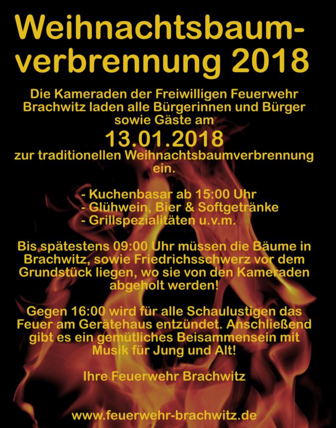 Weihnachtsbaumverbrennung 2018 Feuerwehr Brachwitz