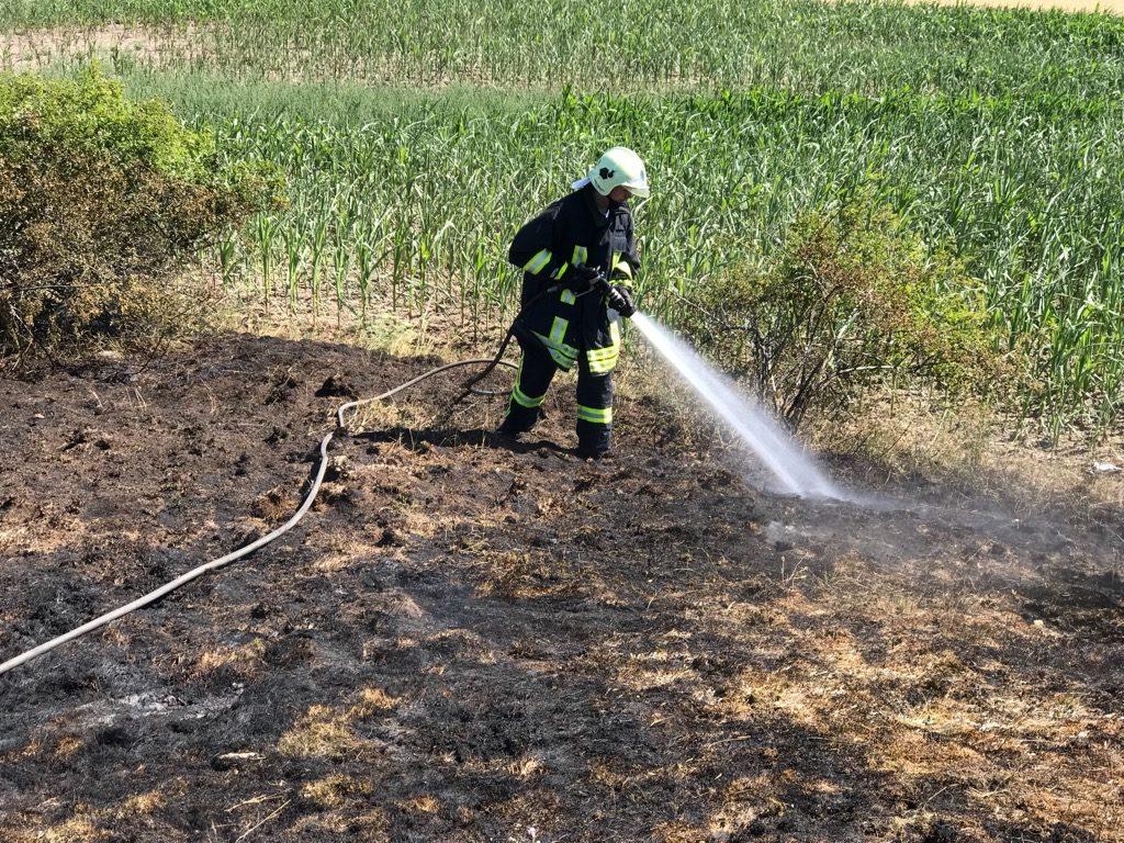 Einsatz 25-2018 Brand Ödland- FF Brachwitz