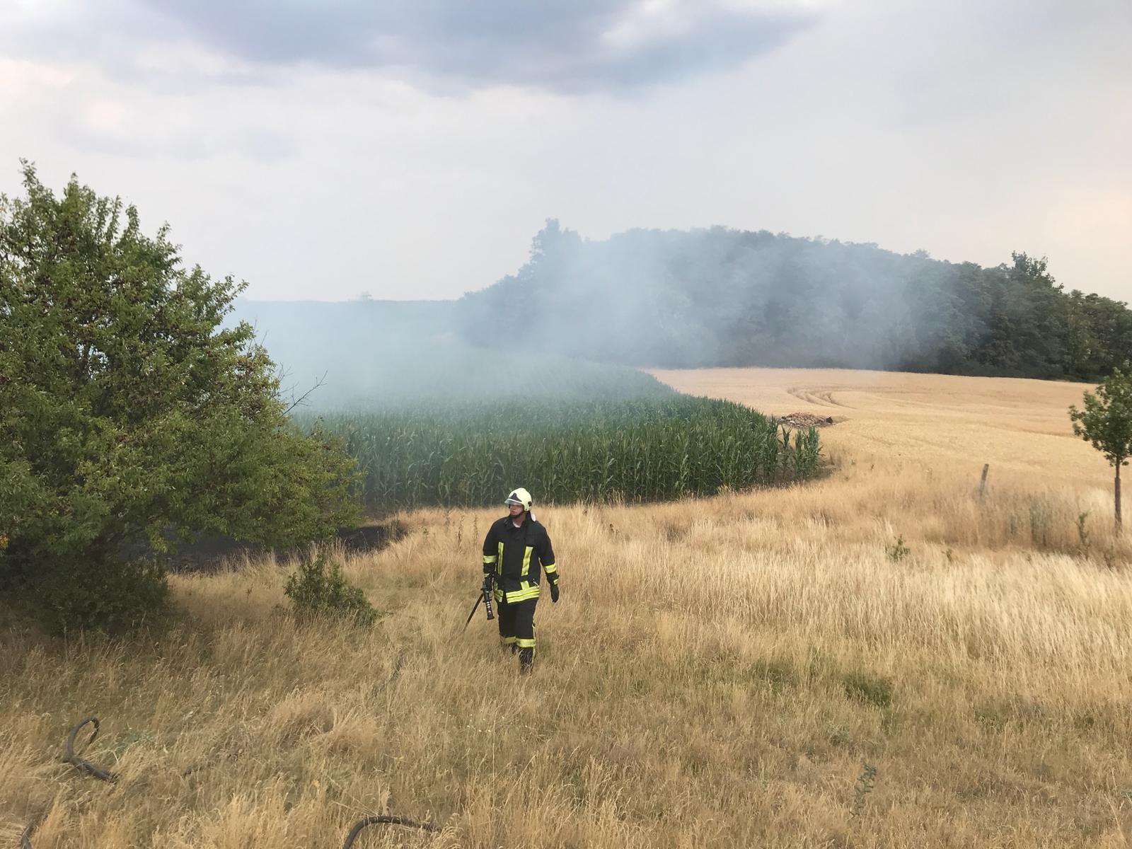 Einsatz 28-2018 Brand Ödland- FF Brachwitz